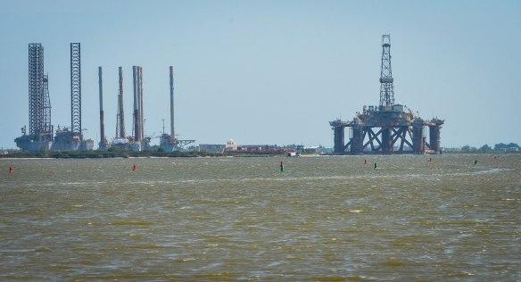 Träskmarker vid Mexikanska Gulfen-50