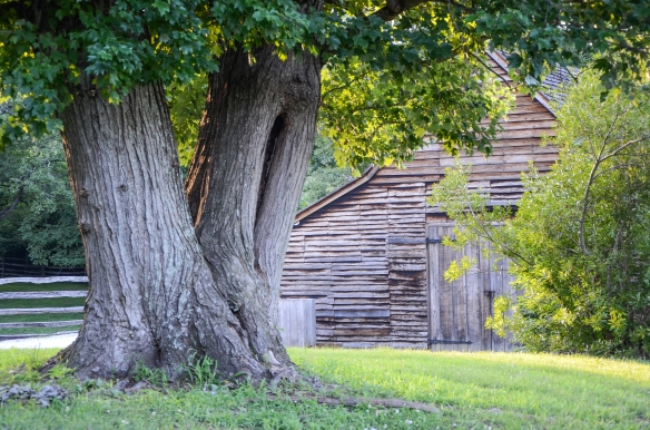 Colonial Willamsburg 2014-18