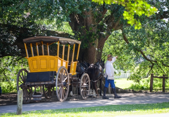 Colonial Williamsburg-20